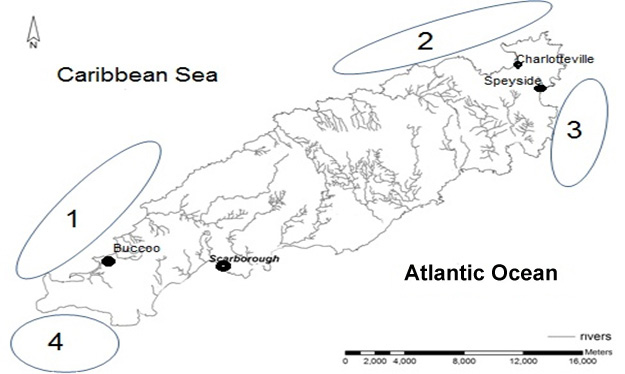 Fig. 2. Location of four of the five dive regions. The fifth region is located 46km south of Scarborough and is not shown on this map.