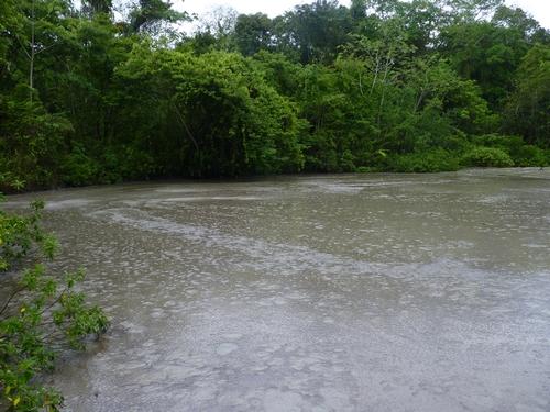 The Lagoon Bouffe tassik.