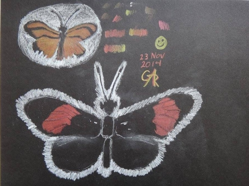 Butterflies by Annelise Randall.