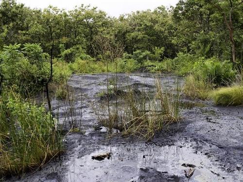 The mud/oil volcano at Marac.