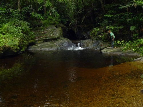 Forest pools at Rincon