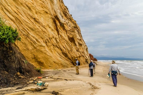 Members exploring the coast in October's Geology trip