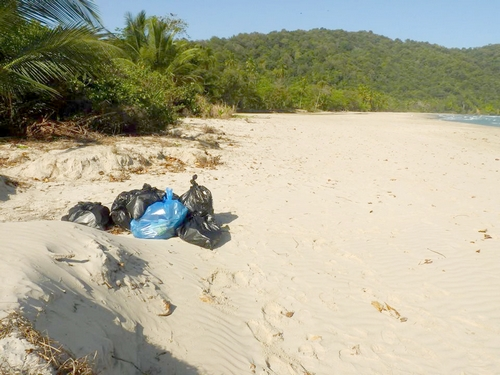 Cleanup at Las Cuevas