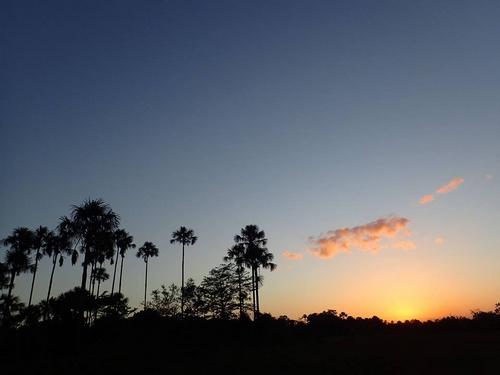 Aripo Savanna at dusk