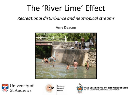 The 'River Lime' Effect